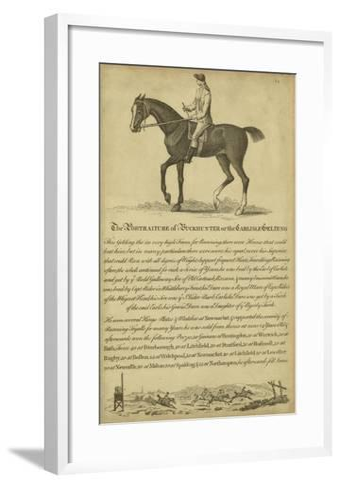 Horse Portraiture IV--Framed Art Print