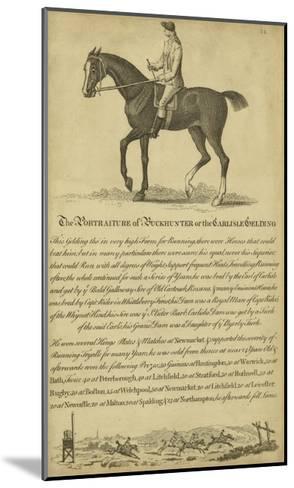 Horse Portraiture IV--Mounted Art Print