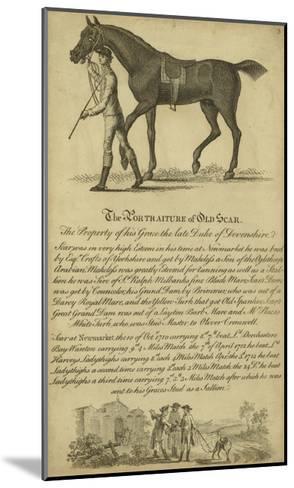Horse Portraiture VIII--Mounted Art Print