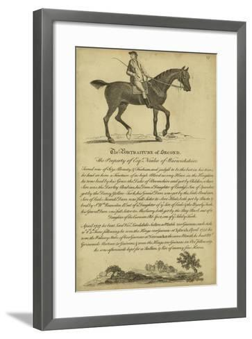 Horse Portraiture V--Framed Art Print