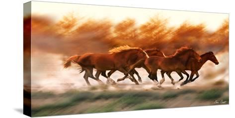 Blazing Herd II-David Drost-Stretched Canvas Print