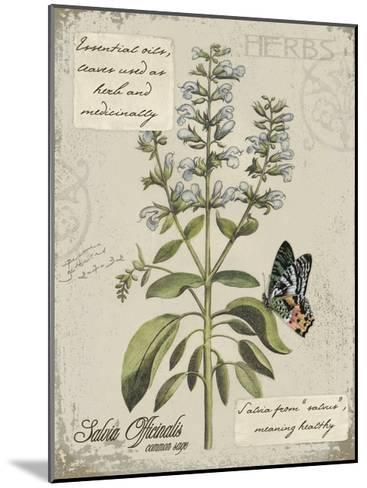 Herbs & Butterflies II-Kate Ward Thacker-Mounted Art Print