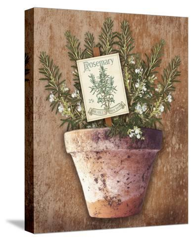 Potted Herbs II-Kate Ward Thacker-Stretched Canvas Print