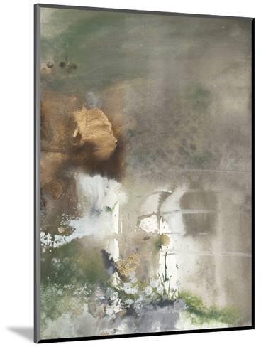 Canyon Seasons II-Joyce Combs-Mounted Premium Giclee Print
