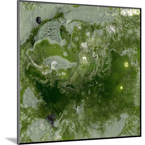 Pangaea I-Alicia Ludwig-Mounted Premium Giclee Print