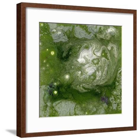 Pangaea II-Alicia Ludwig-Framed Art Print