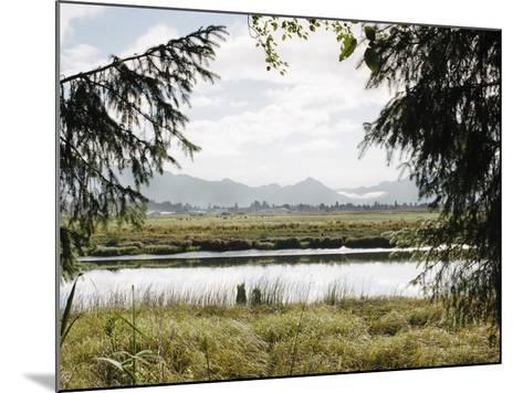 Pacific Northwest Oregon X-Adam Mead-Mounted Photographic Print