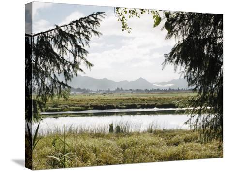 Pacific Northwest Oregon X-Adam Mead-Stretched Canvas Print