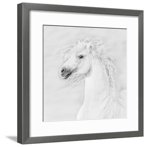B&W Horses III-PHBurchett-Framed Art Print