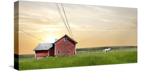 Farm & Country IV-James McLoughlin-Stretched Canvas Print