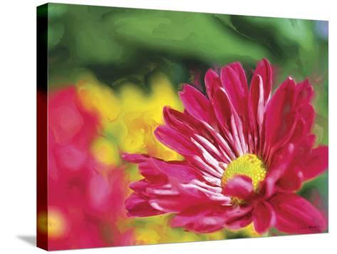 Painterly Flower VI-Lola Henry-Stretched Canvas Print