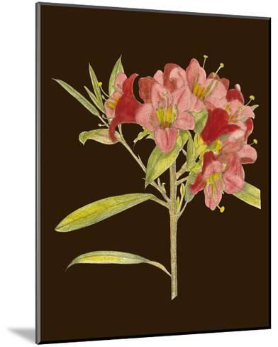 Crimson Blooms IV-Curtis-Mounted Art Print