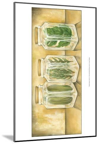 Spice Jars II-Laura Nathan-Mounted Art Print