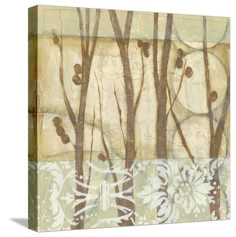 Small Willow and Lace III-Jennifer Goldberger-Stretched Canvas Print