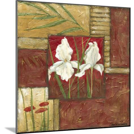 Red Lacquer Collage II-Chariklia Zarris-Mounted Art Print
