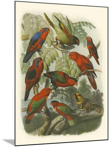Red Cassel Birds II-Cassell-Mounted Art Print