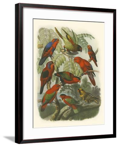 Red Cassel Birds II-Cassell-Framed Art Print