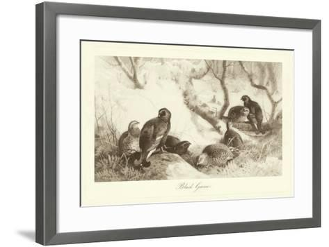 Black Game-A^ Thorburn-Framed Art Print
