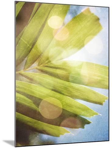 Tropical Daydream I-Emily Robinson-Mounted Photographic Print