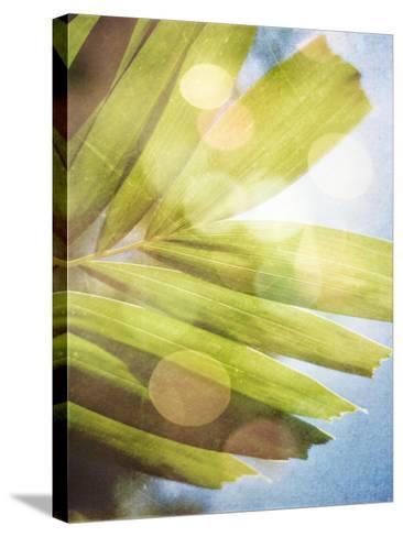 Tropical Daydream I-Emily Robinson-Stretched Canvas Print