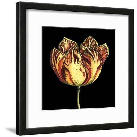 Natural Beauty on Black IV-Vision Studio-Framed Art Print