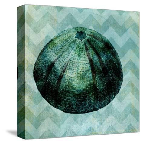 Chevron Shell IV-Vision Studio-Stretched Canvas Print