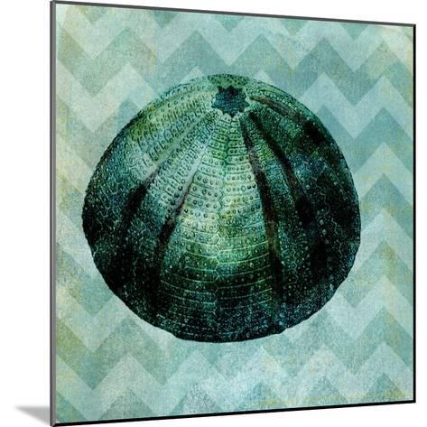 Chevron Shell IV-Vision Studio-Mounted Art Print