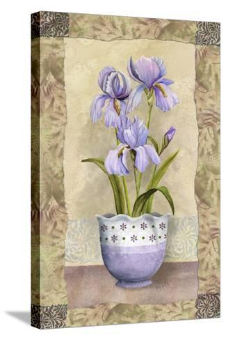 Spring Iris-Abby White-Stretched Canvas Print