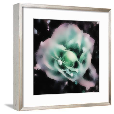 Evening Rose I-Danielle Harrington-Framed Art Print