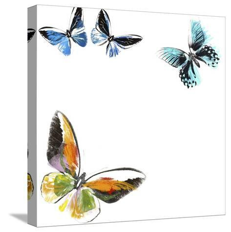 Butterflies Dance VII-A. Project-Stretched Canvas Print