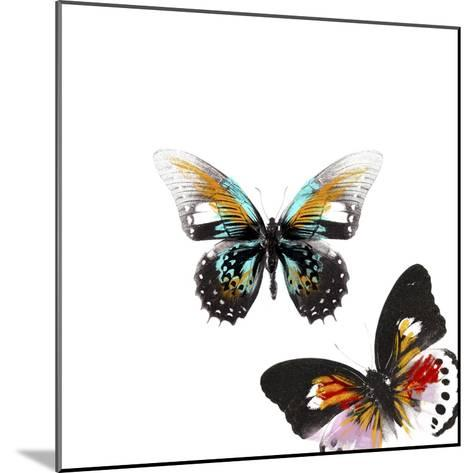 Butterflies Dance VI-A. Project-Mounted Art Print
