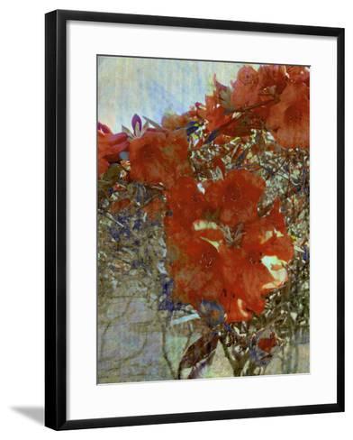 Tangled I-Danielle Harrington-Framed Art Print