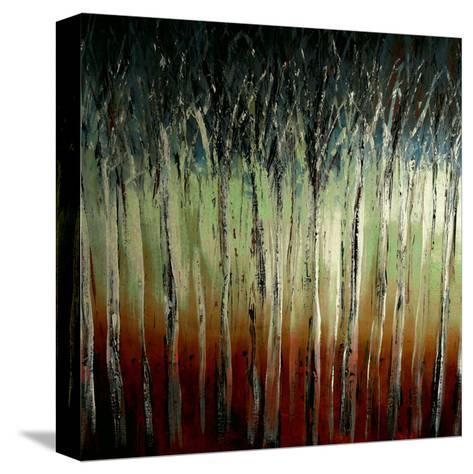 Sunrise-Danielle Harrington-Stretched Canvas Print