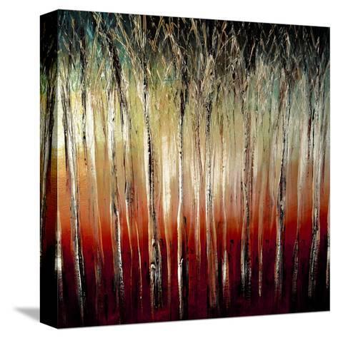 Sunset-Danielle Harrington-Stretched Canvas Print
