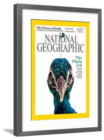 Cover of the April National Geographic Magazine-Joel Sartore-Framed Art Print