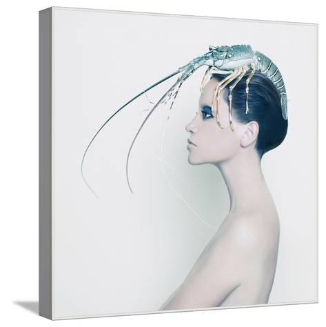 The Lady and the Hummer- Haute Couture-Stretched Canvas Print