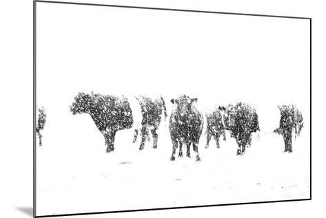 Oreos and Milk II-Aledanda-Mounted Art Print