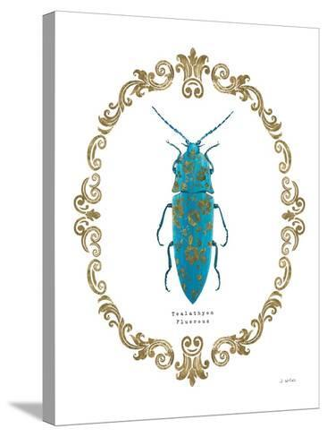 Adorning Coleoptera VIII-James Wiens-Stretched Canvas Print