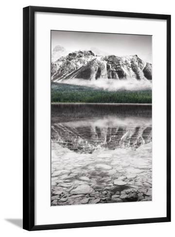 Waterfowl Lake Panel II BW with Color-Alan Majchrowicz-Framed Art Print