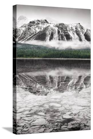 Waterfowl Lake Panel II BW with Color-Alan Majchrowicz-Stretched Canvas Print