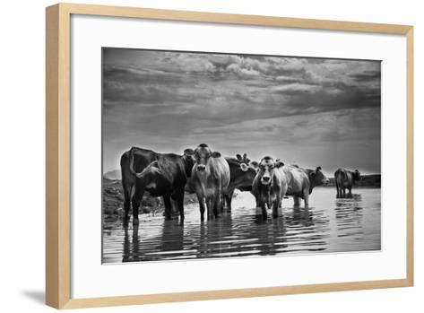 In the River-Aledanda-Framed Art Print