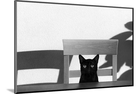 Where Is My Coffee?-Jon Bertelli-Mounted Photographic Print