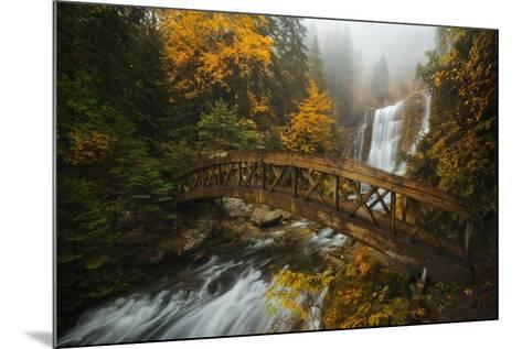 A Bridge in the Forest-Enrico Fossati-Mounted Photographic Print