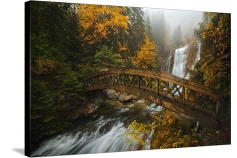 A Bridge in the Forest-Enrico Fossati-Stretched Canvas Print