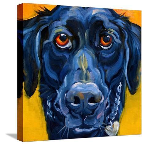 Black Dog-Connie R. Townsend-Stretched Canvas Print