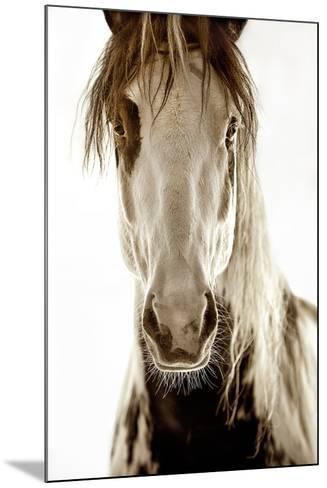 Wilbur Cruz-Lisa Dearing-Mounted Photographic Print