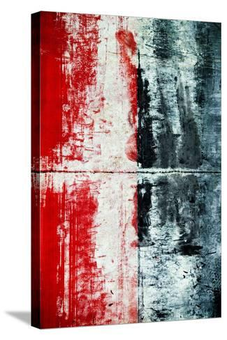 Xray-Jean Bryan-Stretched Canvas Print
