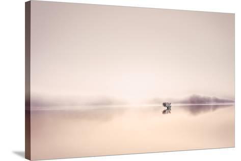 Dawn Dew-Lynne Douglas-Stretched Canvas Print
