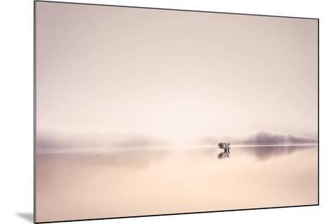 Dawn Dew-Lynne Douglas-Mounted Photographic Print