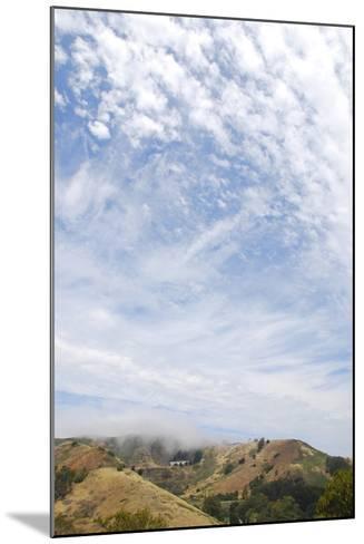 Marin Headlands, San Francisco, California-Anna Miller-Mounted Photographic Print